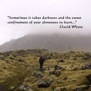 David Whyte_Quote_Aloneness