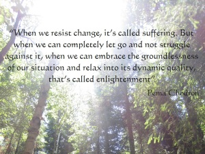 March Post_Pema Chodron