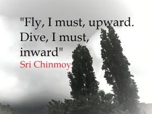 SriChinmoy_Dive