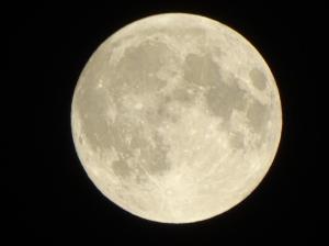 moon-etc-043